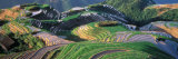 Landscape of Rice Terraces, China Photographic Print by Keren Su