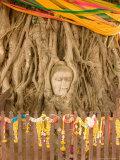 Buddha in Tree Ruts at Ayuthaya, Siam, Thailand Photographic Print by Gavriel Jecan