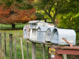 Letterboxes, King Country, North Island, New Zealand Photographic Print by David Wall