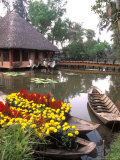 Old-Fashioned Boats with Traditional Flowers, Mekong Delta, Vietnam Photographic Print by Bill Bachmann