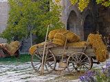 Hay Wagon with Ancient Tools, Caravanserai, Turkey Photographic Print by Joe Restuccia III