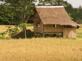 Hut in the Tambon Nong Hin Valley, Thailand Photographic Print by Gavriel Jecan