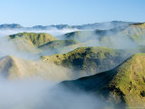 Misty Farmland by Wanganui, Raetihi Road, near Wanganui, North Island, New Zealand Photographic Print by David Wall