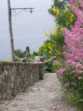 Castle Walkway of 15th Century Castello Aragonese, Ischia, Campania, Italy Photographic Print by Walter Bibikow