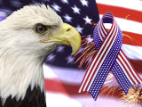 Eagle, Fireworks, Ribbon, and Flag Photographic Print by Bill Bachmann