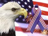 Eagle, Fireworks, Ribbon, and Flag 写真プリント : ビル・バッハマン