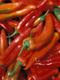 Chili Peppers, Siracusa, Italy Photographic Print by Dave Bartruff