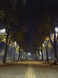 Park at Night, Padua, Italy Photographic Print by Chuck Haney