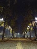 Park at Night, Padua, Italy Photographic Print by Chuck Haney