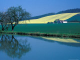 Burgundy Canal, Burgundy, France Photographic Print by Dave Bartruff