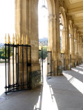 Jardin du Palais Royal, Royal Palace Garden, Paris, France Photographic Print by Michele Molinari