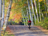Mountain Biker on Forest Road Near Copper Harbor, Michigan, USA Photographic Print by Chuck Haney