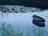 Rowboat on Lake Surrounded by Water Lilies, Lake District National Park, England Photographic Print by Tom Haseltine