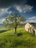 Old Farmhouse, Pergusa, Enna, Sicily, Italy Photographic Print by Walter Bibikow