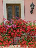 Balcony Detail, Corso Umberto 1, Taormina, Sicily, Italy Photographic Print by Walter Bibikow