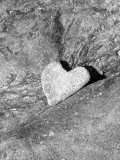 Heart Shaped Rock, Sradled in Larger Rock Photographic Print by Janell Davidson