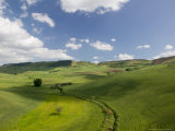 Green Fields from Road S 561, Pergusa, Enna, Sicily, Italy Photographic Print by Walter Bibikow