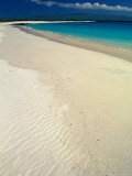 White Sand Beach, San Cristobal Island, Galapagos Islands, Ecuador Photographic Print by Jack Stein Grove