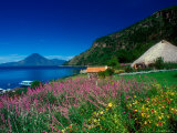 View of Hotel Grounds and Lake, Hotel Atitlan, Lake Atitlan, Guatemala Photographic Print by Alison Jones