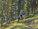 Bangtail Ridge Trail near Bozeman, Montana, USA Photographic Print by Chuck Haney