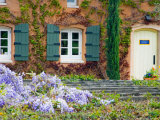 Viansa Winery, Sonoma Valley, California, USA Photographic Print by Julie Eggers