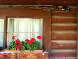 Fly Fishing Rods on Cabin Wall, Lake City, Colorado, USA Photographic Print by Janell Davidson