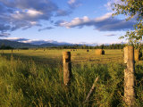 Hay Bales in Field, Whitefish, Montana, USA Photographic Print by Chuck Haney