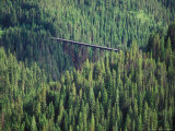 Old Train Trestle, Hiawatha Bike Trail, Idaho, USA Photographic Print by Brent Bergherm