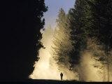 Mountain Biker on a Dusty Road, Swan Valley, Montana, USA Fotoprint van Chuck Haney