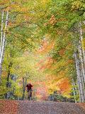 Mountain Biker on Forest Road near Copper Harbor, Michigan, USA Stampa fotografica di Chuck Haney