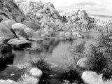 Barker Dam, Joshua Tree National Park, California, USA Photographic Print by Janell Davidson