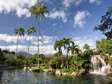 Charles Sleicher - Hanalei Bay Resort, Princeville, Kauai, Hawaii, USA Fotografická reprodukce