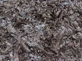 Close-up of a Pile of Cool Gray Ashes Photographic Print