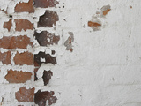 Close-up of a Brick Wall with Pealing White Paint Photographic Print