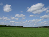 An Expanse of Lush Green Grass with Blue Sky and Flutty Clouds by a River Photographic Print