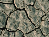 Parched Earth Indicative of Scorching Year-Round Temperatures, Djibouti, Djibouti Fotografisk tryk af Frances Linzee Gordon