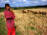 Shepherd Girl with Sheep, Amrit, Syria Photographic Print by Wayne Walton