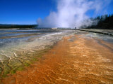 Bacteria Mat and Excelsior Geyser (Mid Way Geyser Basin), Yellowstone National Park, Wyoming Photographic Print by Carol Polich