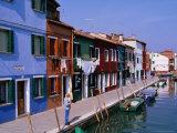 Fondamenta Cavanella Houses, Burano, Veneto, Italy Photographic Print by Christopher Groenhout