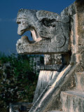 Jaguar Head Carving and Staircase Leading to Portico of Temple of Warriors, Chichen Itza, Mexico Photographic Print by Barnett Ross