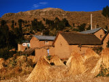 Adobe Houses and Wheat Bundles in Colquecachi District, Amantani Island, Puno, Peru Photographic Print by Mark Daffey