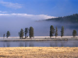 Alum Creek in the Hayden Valley, Yellowstone National Park, Wyoming, USA Photographic Print by Carol Polich