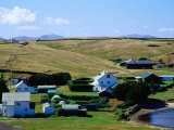 Houses Next to Lake, Port Howard, Falkland Islands Photographic Print by Tony Wheeler