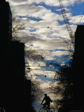 Silhouette of Cyclist on William Street, Melbourne, Australia Photographic Print by Will Salter