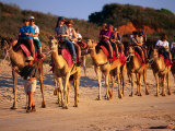 Camel Trail Tour on Cable Beach, Broome, Australia Photographic Print by Trevor Creighton
