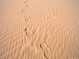 Footprints in Sand at Eco Beach, Broome, Australia Photographic Print by Trevor Creighton