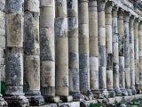 Columns along Cardo, Main Street of Historic Site, Apamea, Hama, Syria Photographic Print by Tony Wheeler