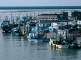 Fishing Trawlers, Alvarado, Mexico Photographic Print by Jeffrey Becom