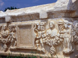 Garlanded Sarcophagus in the Museum Gardens at Afrodisias, Nazilli, Aydin, Turkey Photographic Print by Diana Mayfield