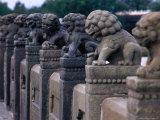 Carved Stone Lions on Marco Polo Bridge Bejing, China Photographic Print by Phil Weymouth